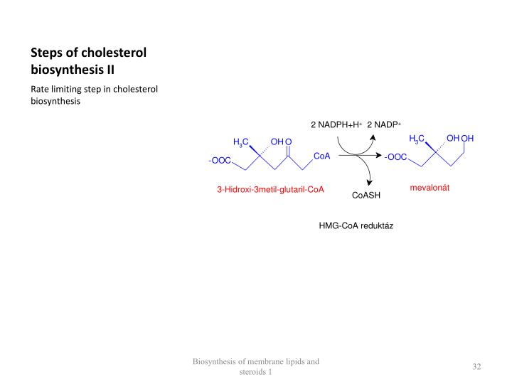 Steps of cholesterol biosynthesis II