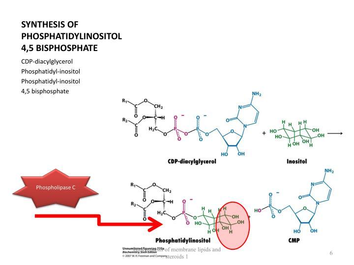 SYNTHESIS OF PHOSPHATIDYLINOSITOL 4,5 BISPHOSPHATE