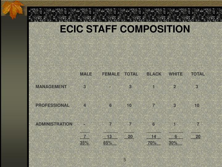 ECIC STAFF COMPOSITION