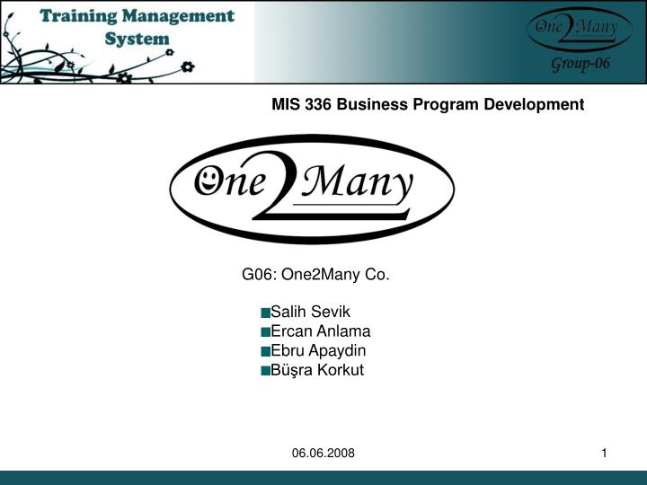 MIS 336 Business Program Development