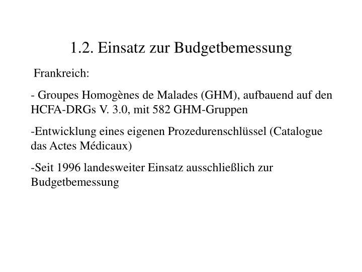 1.2. Einsatz zur Budgetbemessung