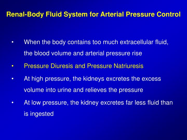 Renal body fluid system for arterial pressure control