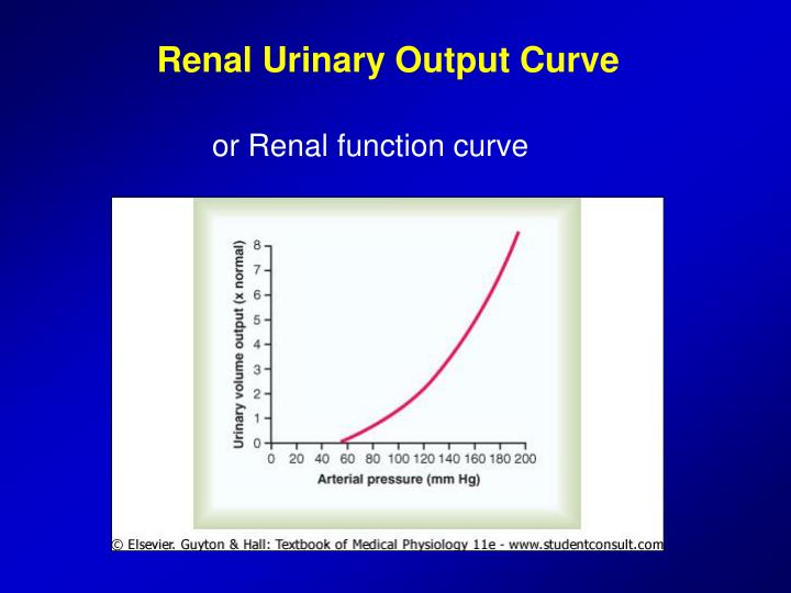 Renal Urinary Output Curve