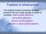 fractions of wheat protein