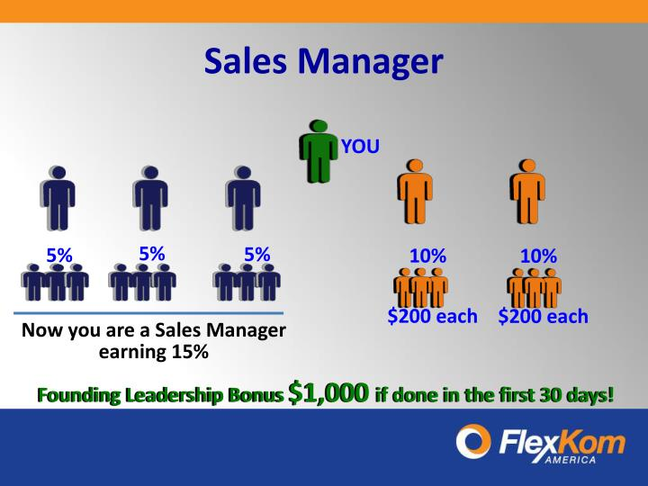 Sales Manager