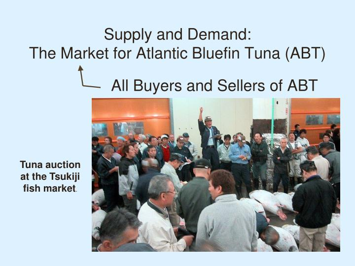 Supply and demand the market for atlantic bluefin tuna abt