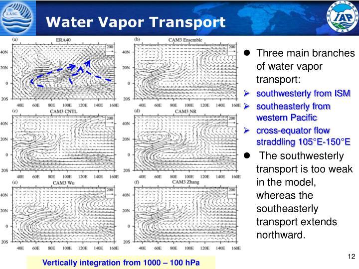 Water Vapor Transport