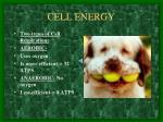 cell energy1