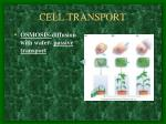 cell transport1