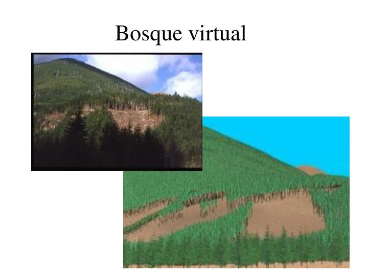 Bosque virtual