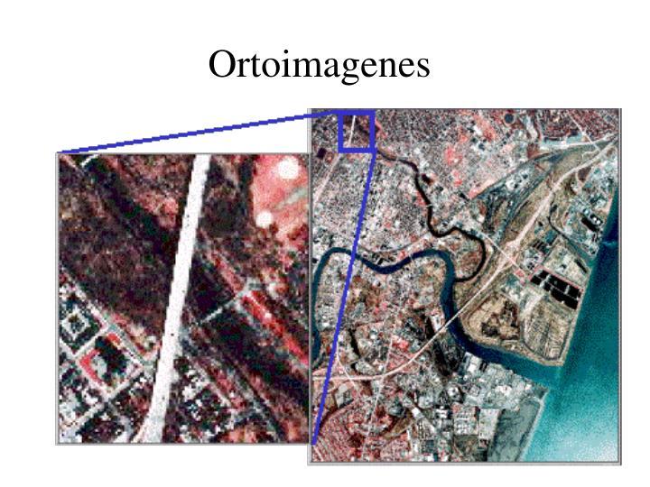 Ortoimagenes