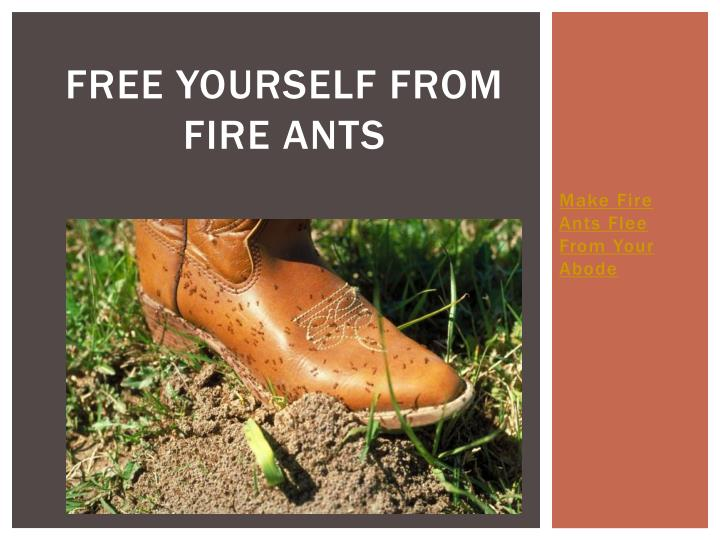 free yourself from fire ants n.