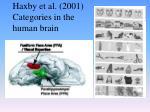 haxby et al 2001 categories in the human brain