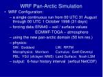 wrf pan arctic simulation1