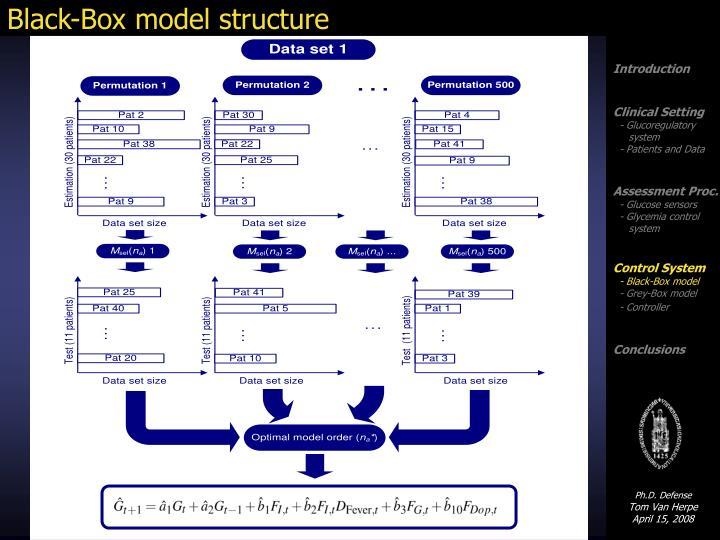 Black-Box model structure