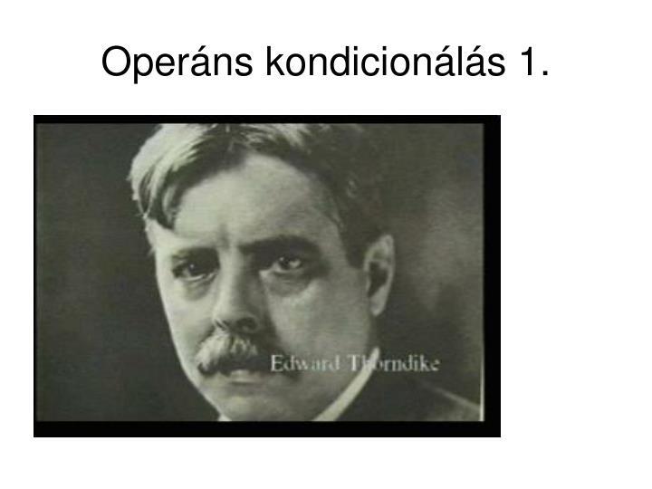 Operáns kondicionálás 1.