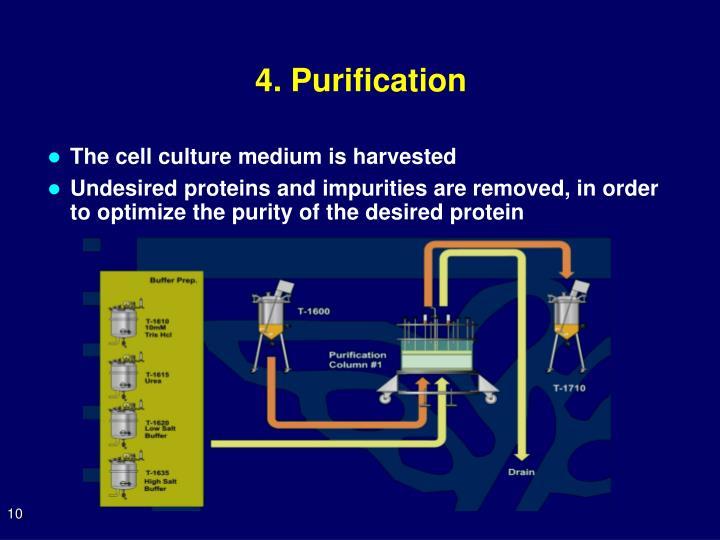 4. Purification