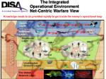 the integrated operational environment net centric warfare view