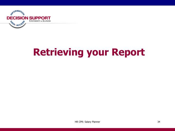 Retrieving your Report