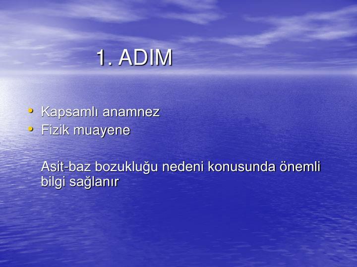 1. ADIM