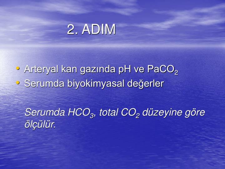 2. ADIM