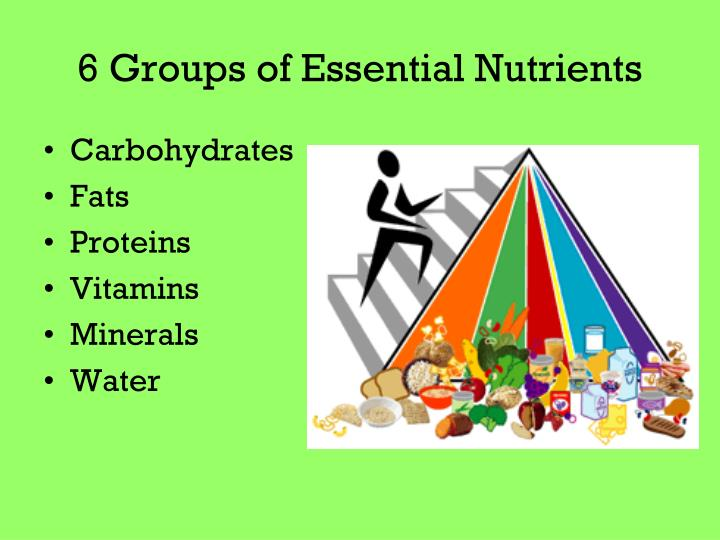 excessive amounts of proteins carbohydrates fats or fiber contribute to health or illness Category: how might insufficient or excessive amounts of proteins carbohydrates fats or fiber contribute to health or illness provide examples sci 220 week 2 food intake – 3 days lindashelp posted on november 16, 2016 by doctoratehelp.