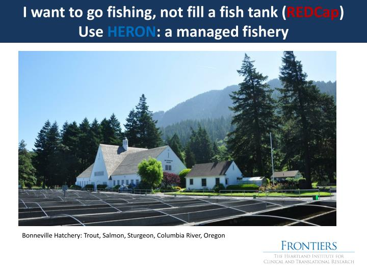 I want to go fishing, not fill a fish tank (