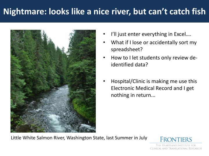 Nightmare: looks like a nice river, but can't catch fish