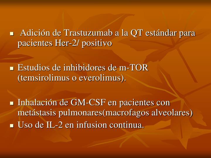 Adición de Trastuzumab a la QT estándar para pacientes Her-2/ positivo