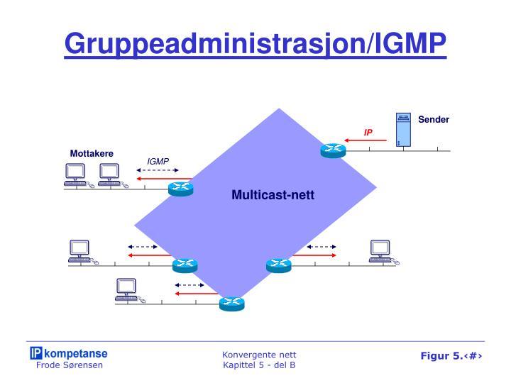 Gruppeadministrasjon/IGMP