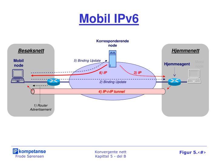 Mobil IPv6