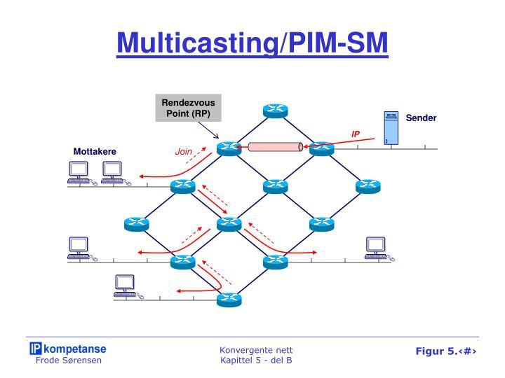 Multicasting/PIM-SM