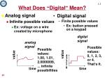what does digital mean1