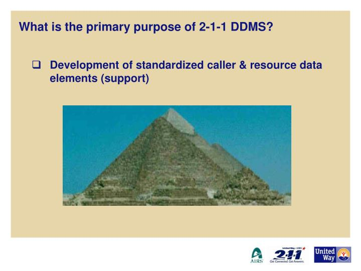 What is the primary purpose of 2-1-1 DDMS?