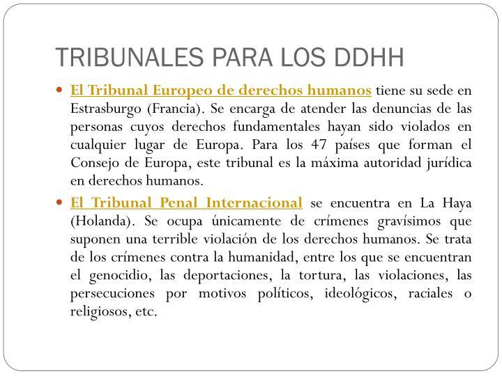 TRIBUNALES PARA LOS DDHH