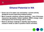 ethanol potential in wa