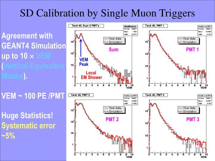 SD Calibration by Single Muon Triggers