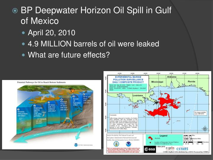 BP Deepwater Horizon Oil Spill in Gulf of Mexico