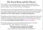 the social brain and the outcast