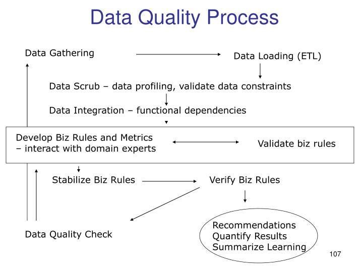 Data Quality Process