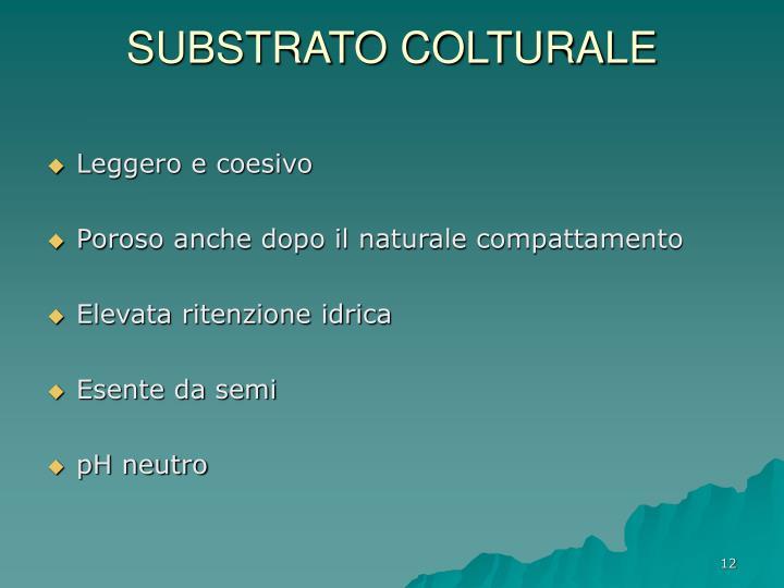 SUBSTRATO COLTURALE
