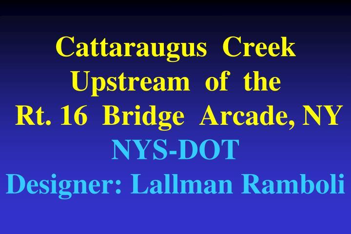 Cattaraugus  Creek  Upstream  of  the