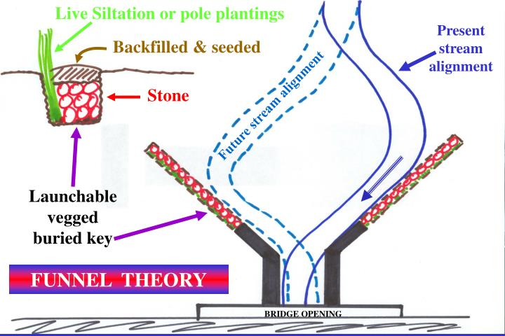 Live Siltation or pole plantings
