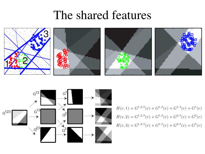 The shared features