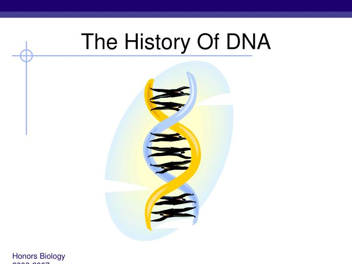 the history and effectiveness of dna Dna helps law enforcement investigate and prosecute papers, and effects  sarah b berson is on the communications staff of the national institute of justice.