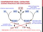 cooperative dual catalysis guiding principles and conclusions