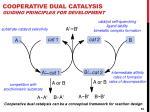 cooperative dual catalysis guiding principles for development