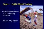 year 1 c d wood testing
