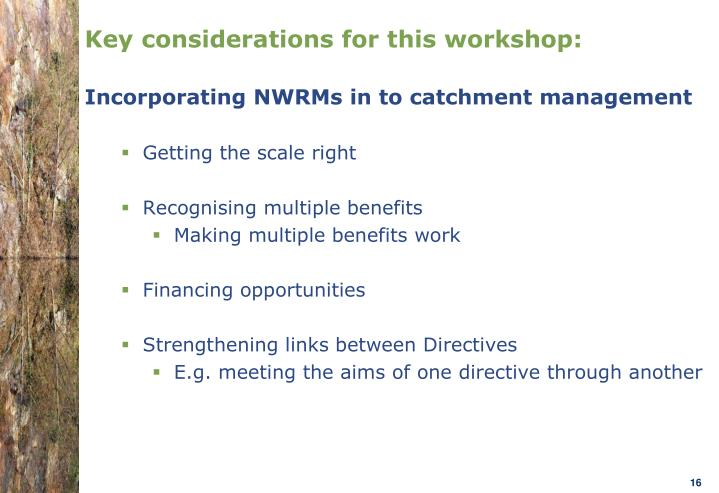 Key considerations for this workshop: