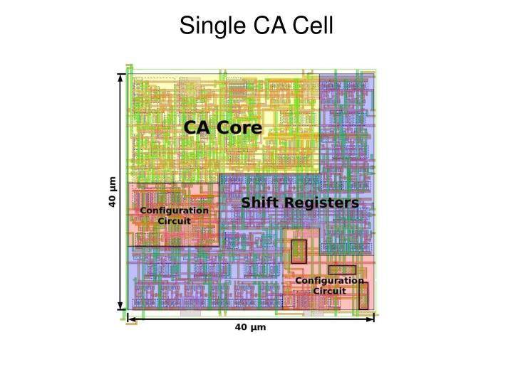 Single CA Cell